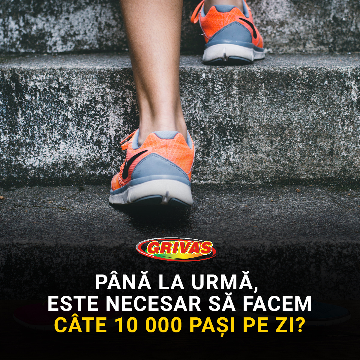 Grivas_Steps_Blog