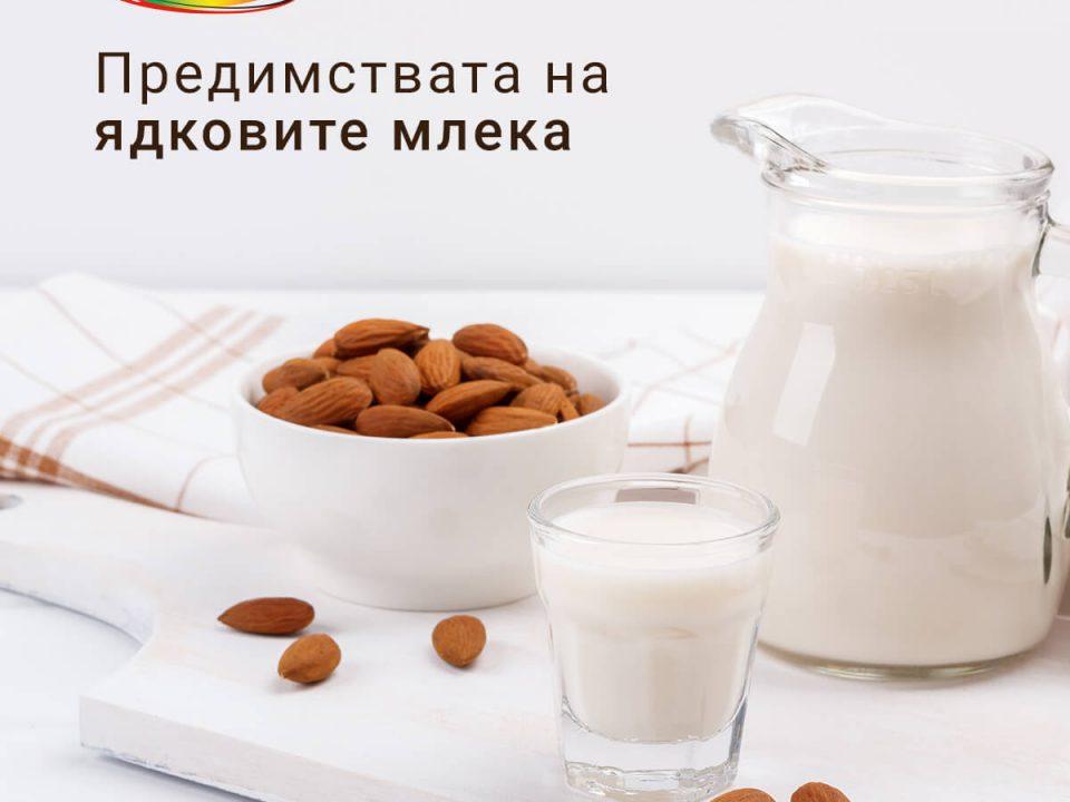 Какви са ползите на ядковите млека